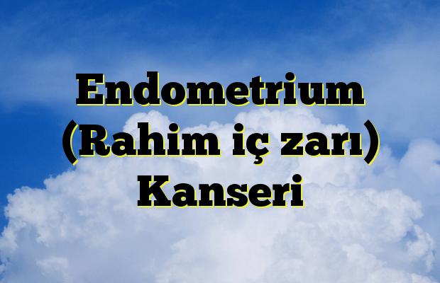 Endometrium (Rahim iç zarı) Kanseri