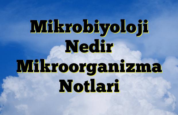 Mikrobiyoloji Nedir Mikroorganizma Notlari