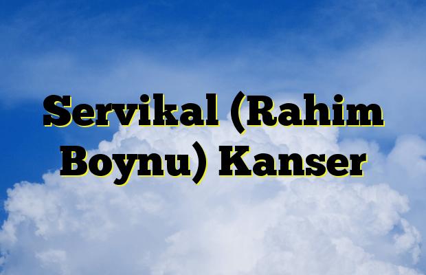Servikal (Rahim Boynu) Kanser
