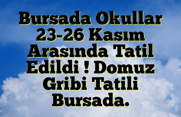 Bursada Okullar 23-26 Kasım Arasında Tatil Edildi ! Domuz Gribi Tatili Bursada.
