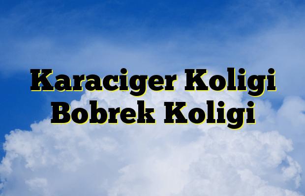 Karaciger Koligi Bobrek Koligi
