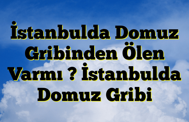 İstanbulda Domuz Gribinden Ölen Varmı ? İstanbulda Domuz Gribi