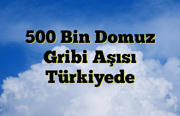 500 Bin Domuz Gribi Aşısı Türkiyede