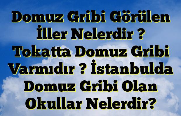 Domuz Gribi Görülen İller Nelerdir ? Tokatta Domuz Gribi Varmıdır ? İstanbulda Domuz Gribi Olan Okullar Nelerdir?