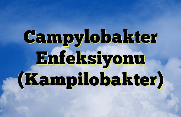 Campylobakter Enfeksiyonu (Kampilobakter)